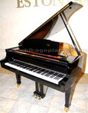 Bohemia 150 Czerny Baby Grand Piano from Chicago Pianos . com