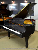Estonia 190 Custom Brushed Satin Ebony Grand Piano from Chicago Pianos . com