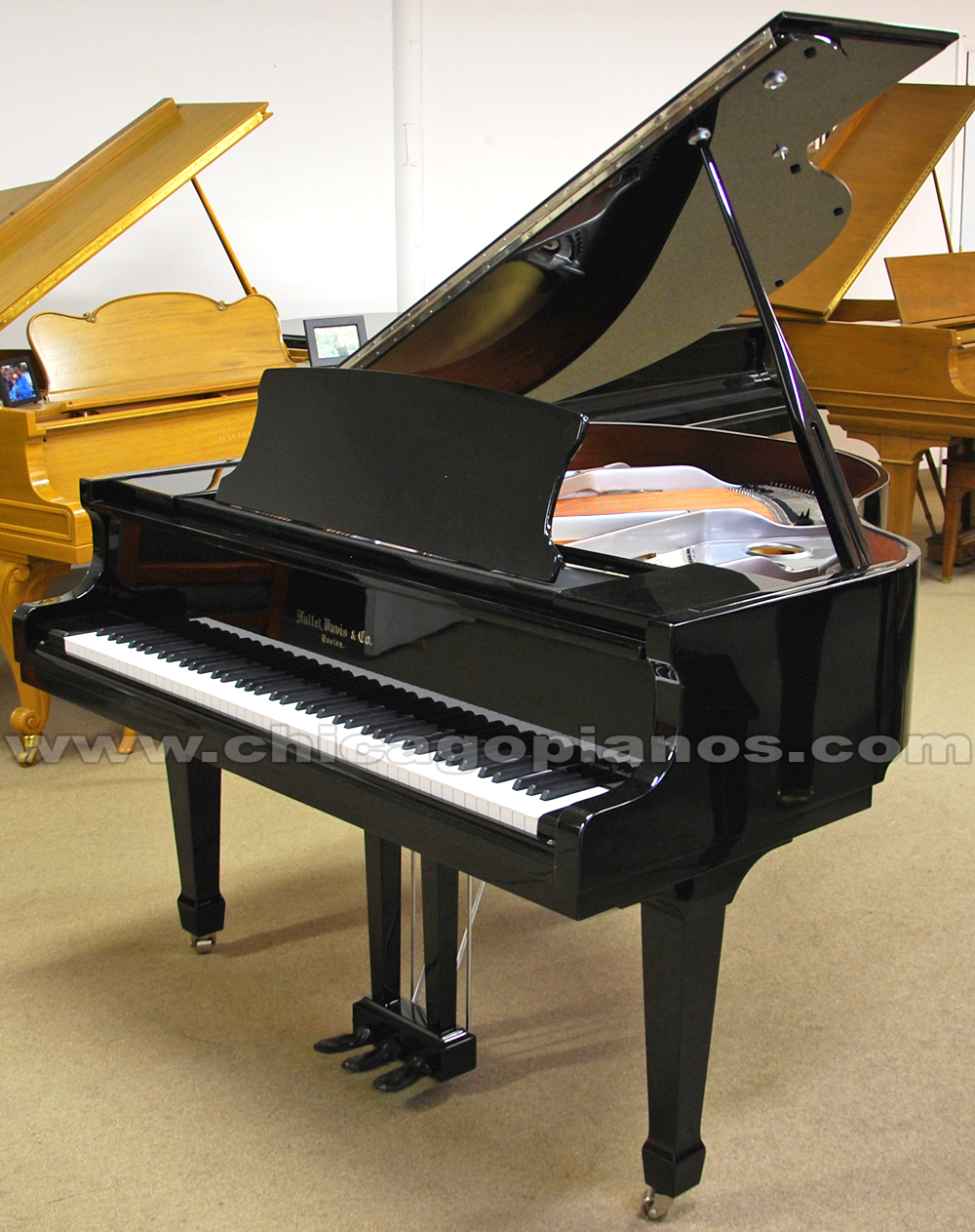 Hallet Davis HS-148 Ebony Polish Nickel Plate Grand Piano